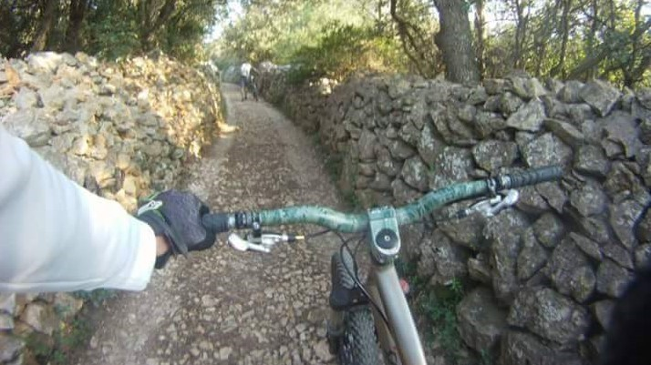 Bike Tours - King Adventures Lošinj